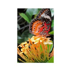 Butterfly on a Blossom Rectangle Magnet (100 pack)