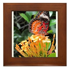 Butterfly on a Blossom Framed Tile