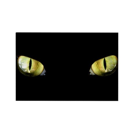 Cat Eyes Rectangle Magnet (100 pack)
