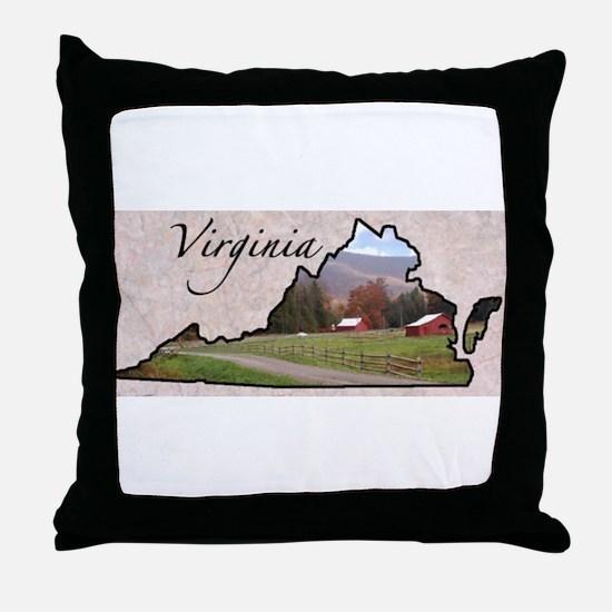 Cool States Throw Pillow