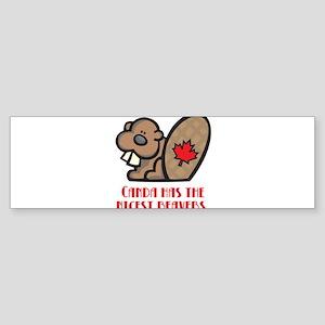 Canada Nicest Beavers Sticker (Bumper)
