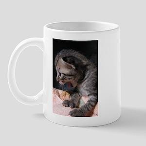 Yawning Kitten Mug