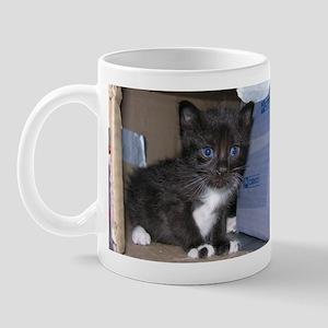 Blue eyed Cutie Mug