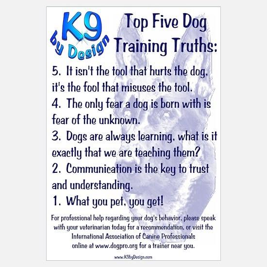 Top 5 Dog Training Truths