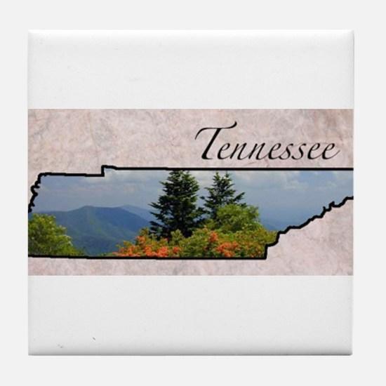 Cute State Tile Coaster