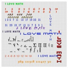 I love math and science Poster