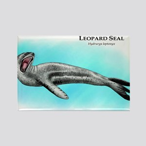 Leopard Seal Rectangle Magnet