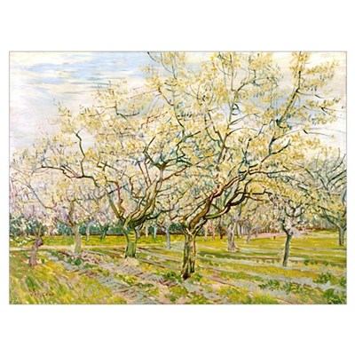 Van Gogh The White Orchard Poster