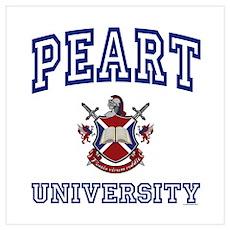 PEART University Poster