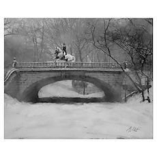 Dressage Horse, Winter Piroue 16x20 Poster