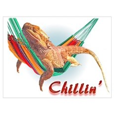 Bearded Dragon Chillin Canvas Art