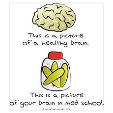 Med School Brain Poster