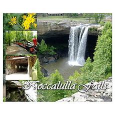 Noccalulla Falls Poster