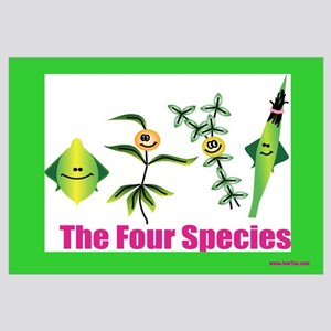 The Four Species Sukkot