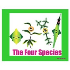 The Four Species Sukkot Poster
