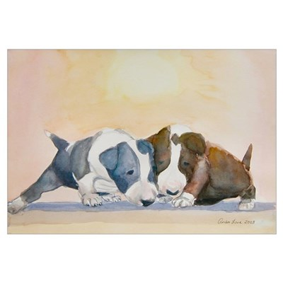 Two Bull Terrier Puppies Poster
