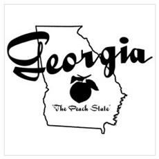 Georgia State Canvas Art