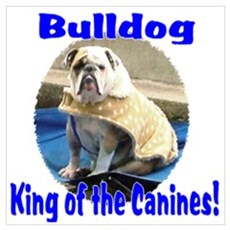 Bulldog, King of the Canine Canvas Art