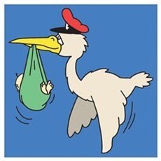 A stork carrying a baby Poster