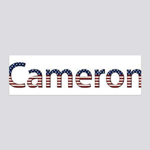 Cameron Stars and Stripes 42x14 Wall Peel