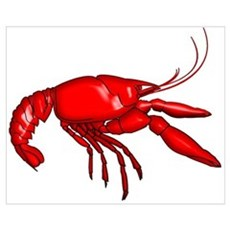 Louisiana Crawfish Poster