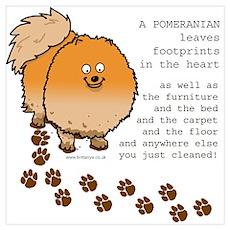 Pomeranians Poster