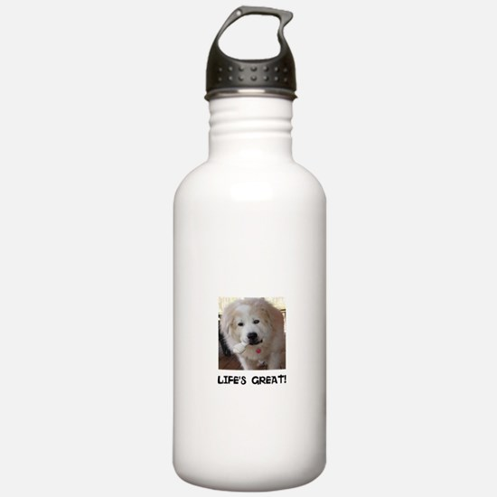 Life's Great Water Bottle