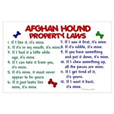 Afghan Hound Property Laws 2 Poster