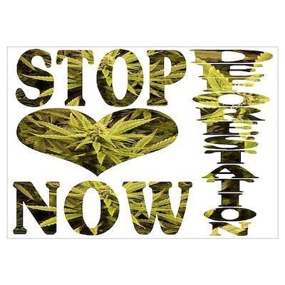 STOP DEFORESTATION NOW Poster