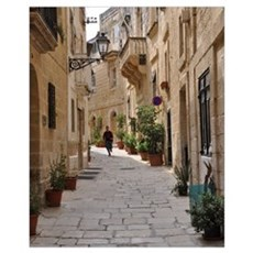 Visions of Malta Poster