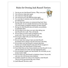 Rules for Owning JRTs Poster