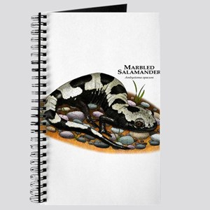 Marbled Salamander Journal