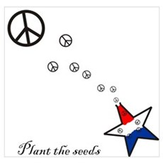 Plant the seeds Poster