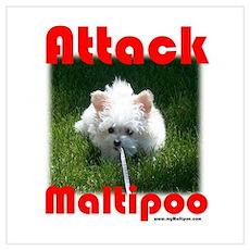 Attack Maltipoo Poster