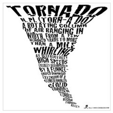 The Best Storm Chaser Ever in Poster