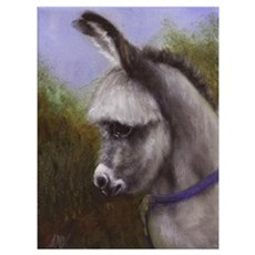Donkey Foal Painting Horse Art Poster