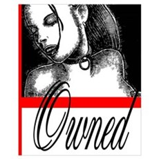Owned Framed Print