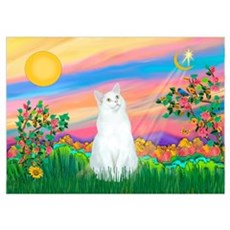Day Star / (White) Cat Poster