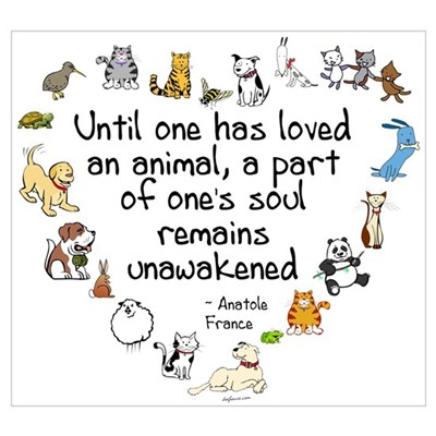 Image result for until one has loved an animal a part of one's soul remains unawakened