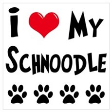 Schnoodle Poster