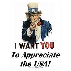 """""""Appreciate the USA"""" Poster"""