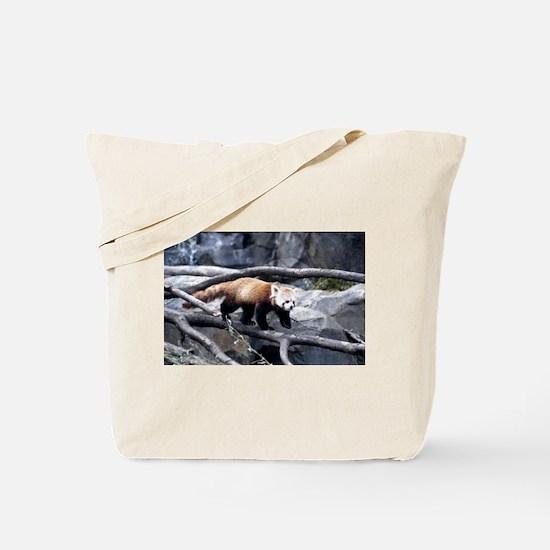 Red Panda 3 Tote Bag