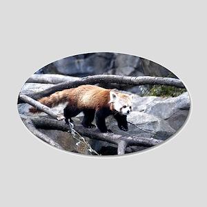 Red Panda 3 22x14 Oval Wall Peel
