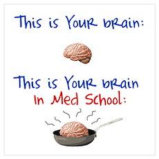 Brain in Med School Poster