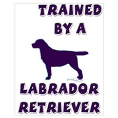 Labrador Retriever Ppl Poster