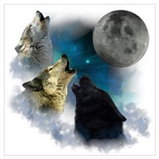 Northern Lights Wolfs Howling Poster