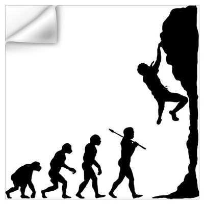 Rock Climbing Wall Decal