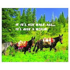 Mule Poster
