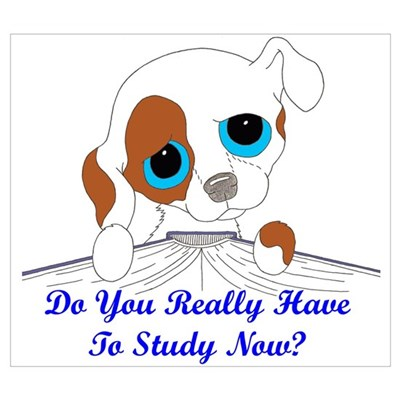 Do You Really Have To Study N Poster