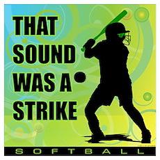 2011 Softball 111 Poster